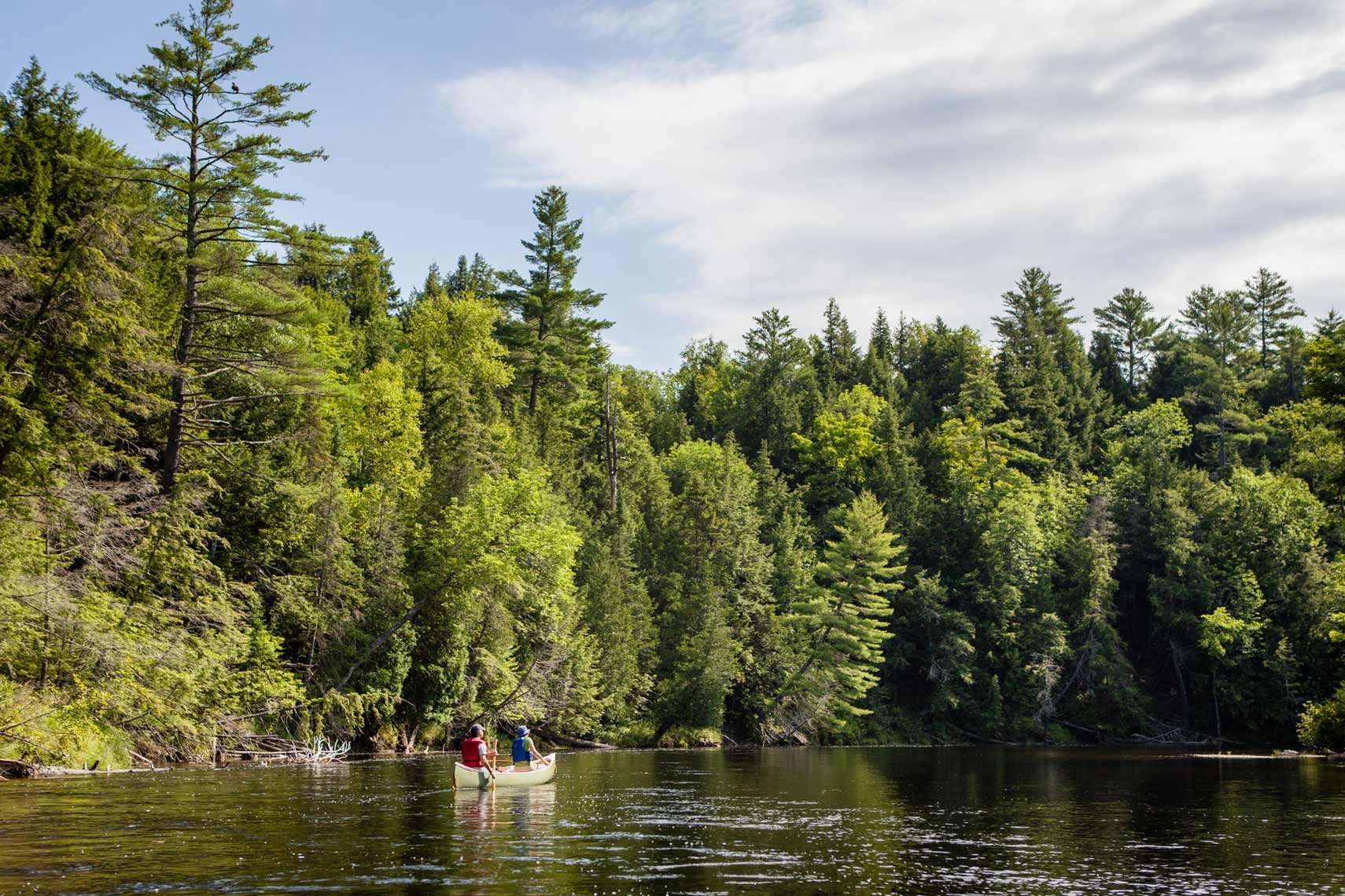Kennebec River   |  Nature + Conservation