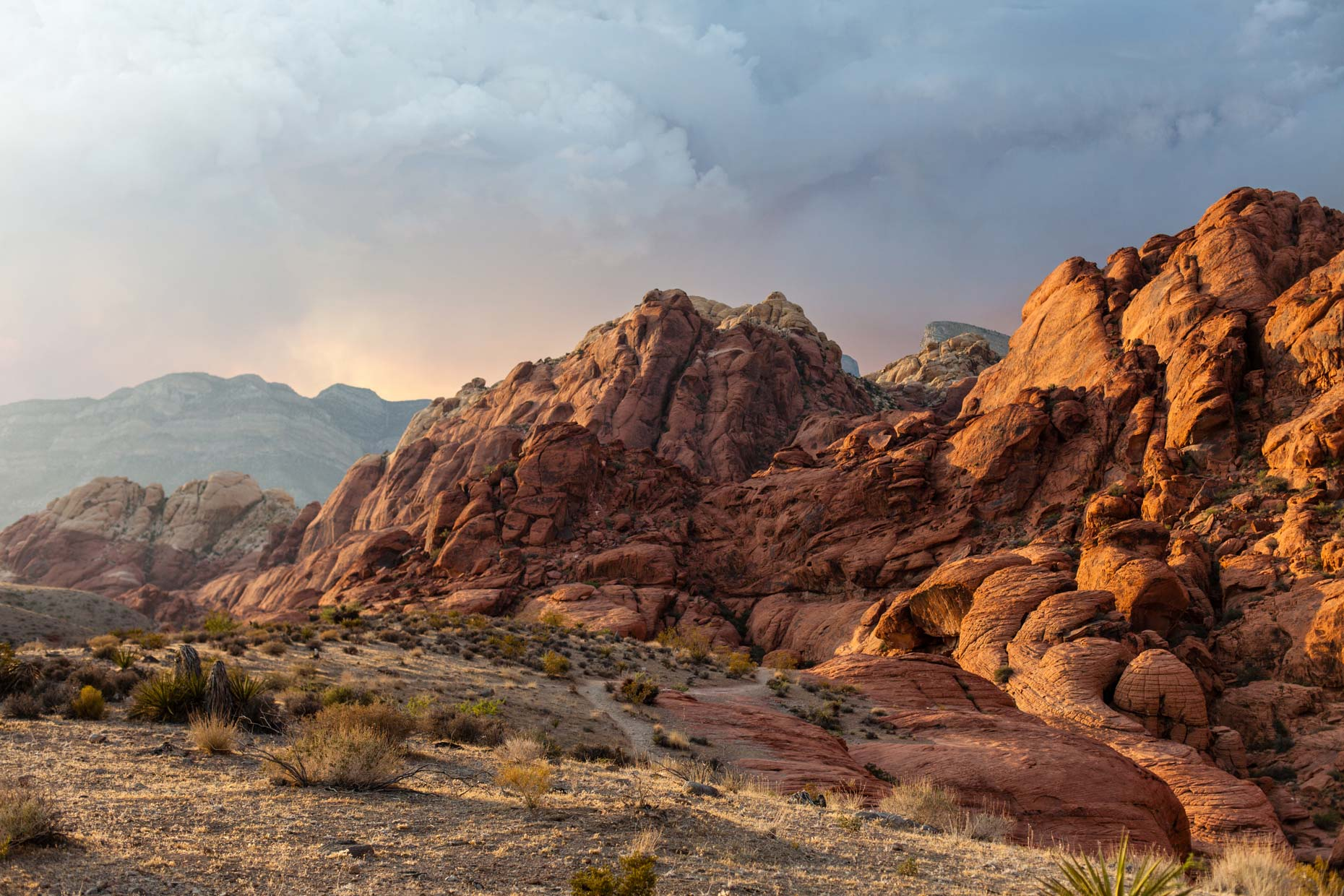 Nature + Landscape│Red Rock Canyon, Nevada