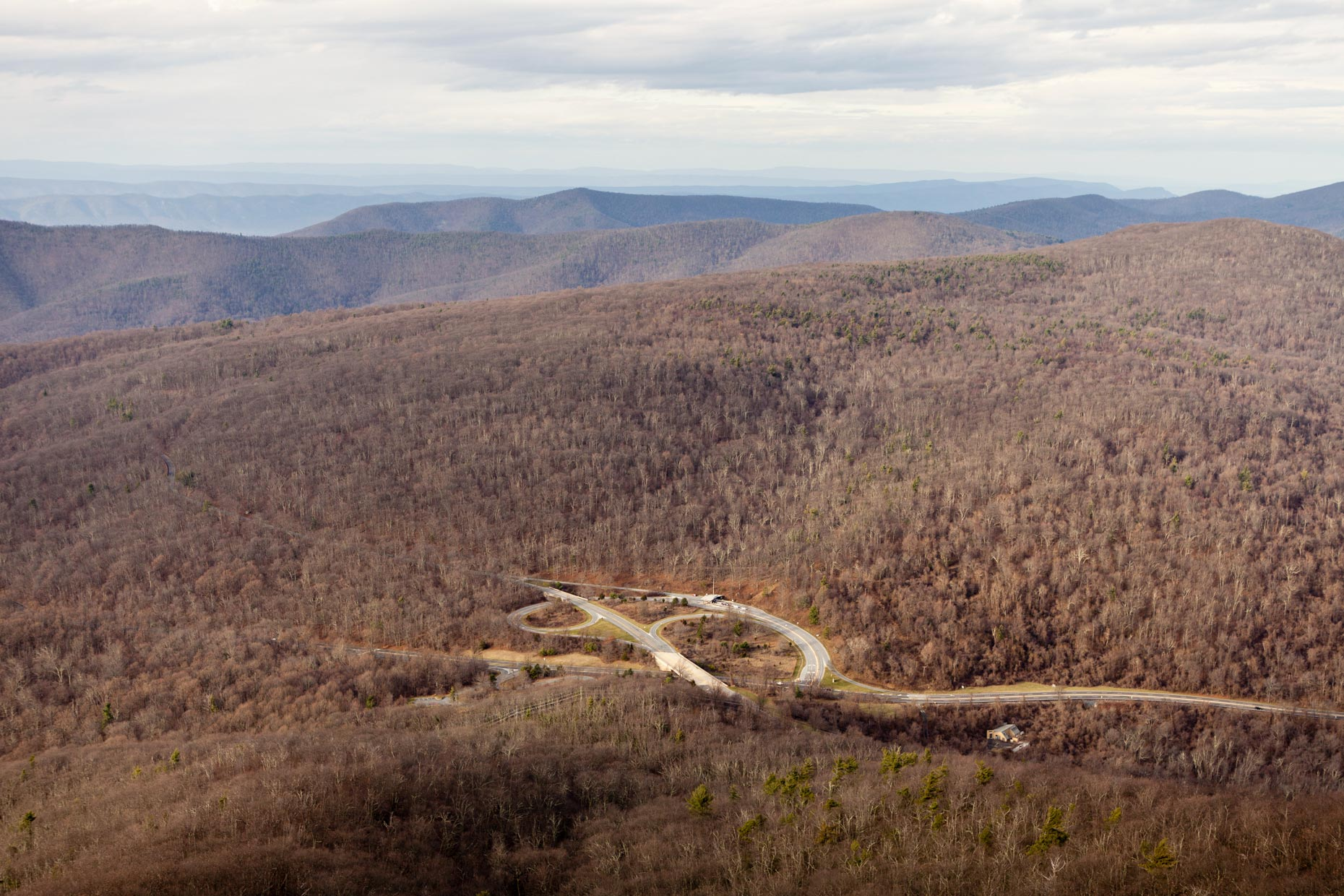 Nature + Landscape│Skyline Drive, Shenandoah National Park, Virginia