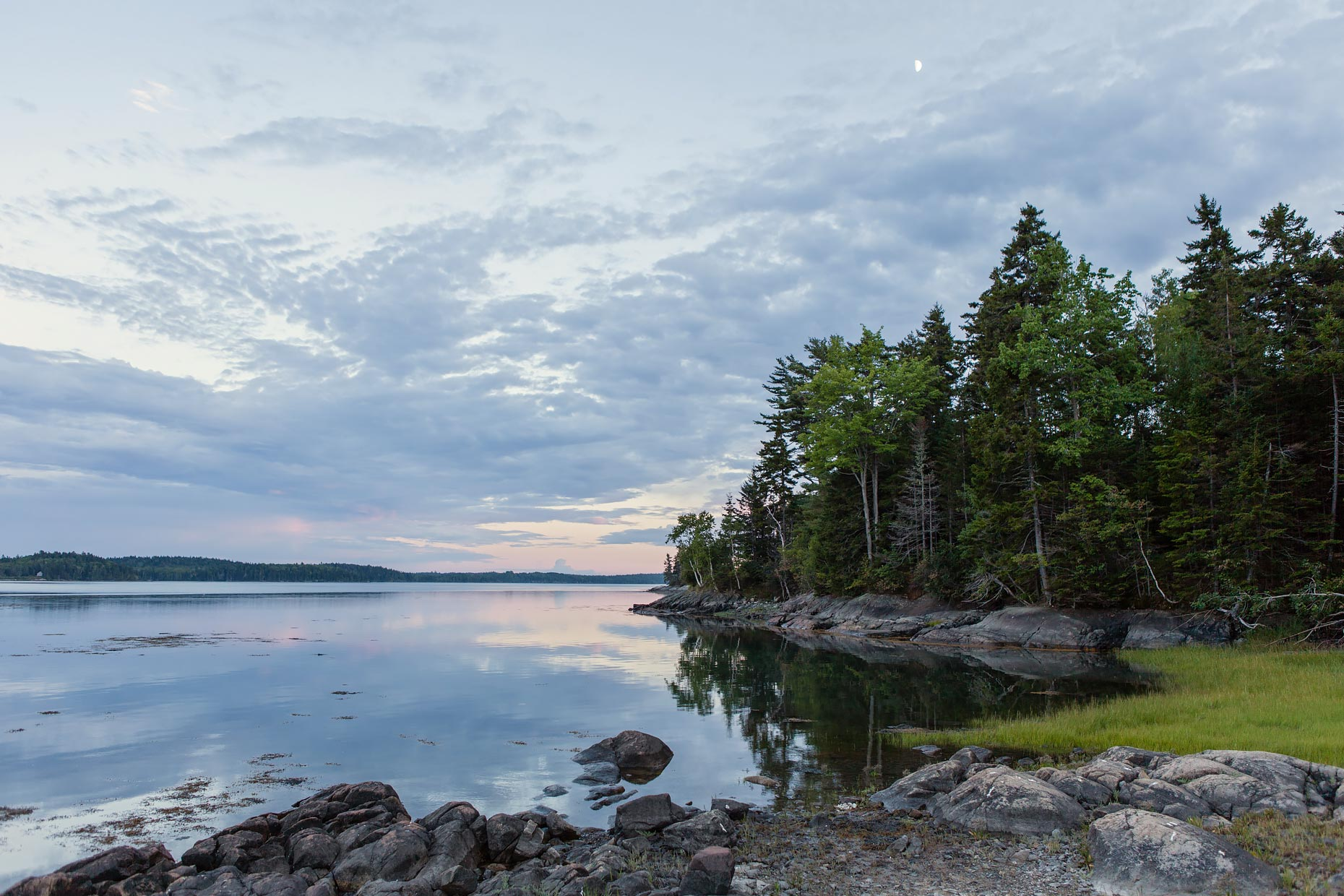 Nature + Landscape│Cobscook Bay, Maine