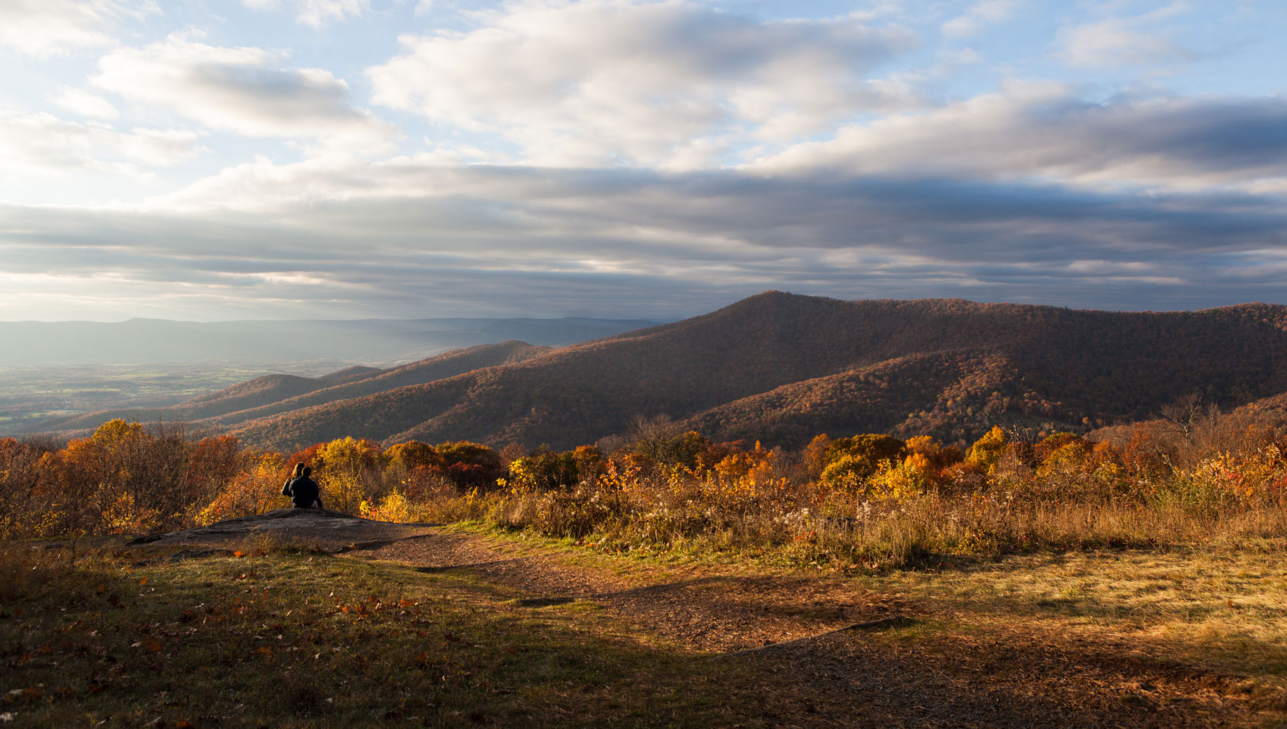 Nature + Landscape│Shenandoah National Park, Virginia